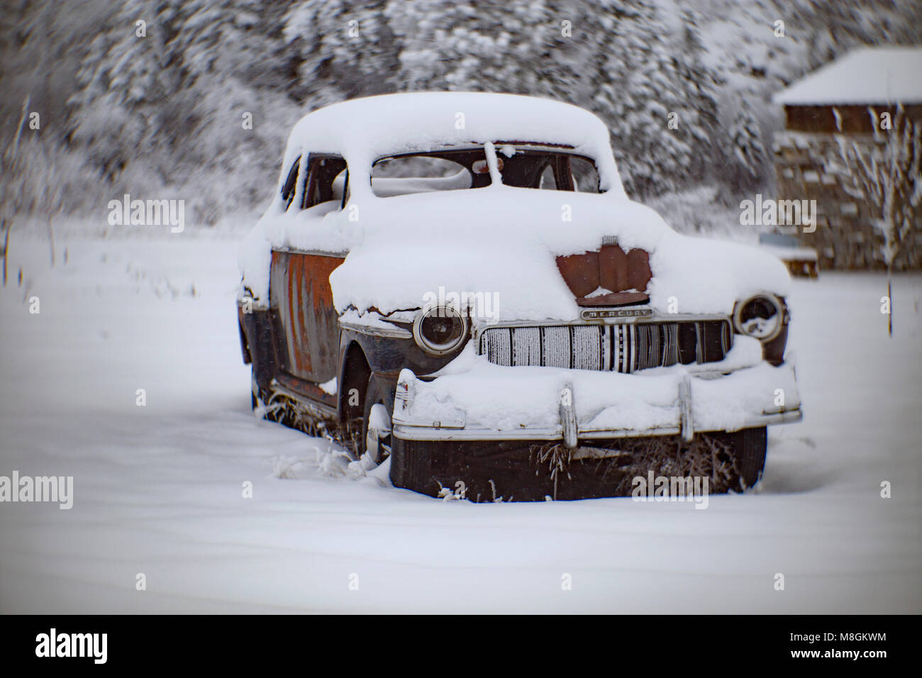 Mercury Eight Stock Photos Images Alamy 1941 Coupe A Snow Covered 1947 Near Perma Montana