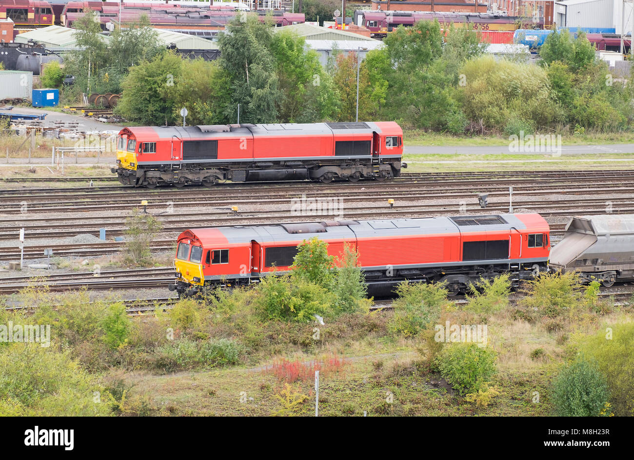 Two red locomotives at Toton Sidings, Nottinghamshire, UK - Stock Image