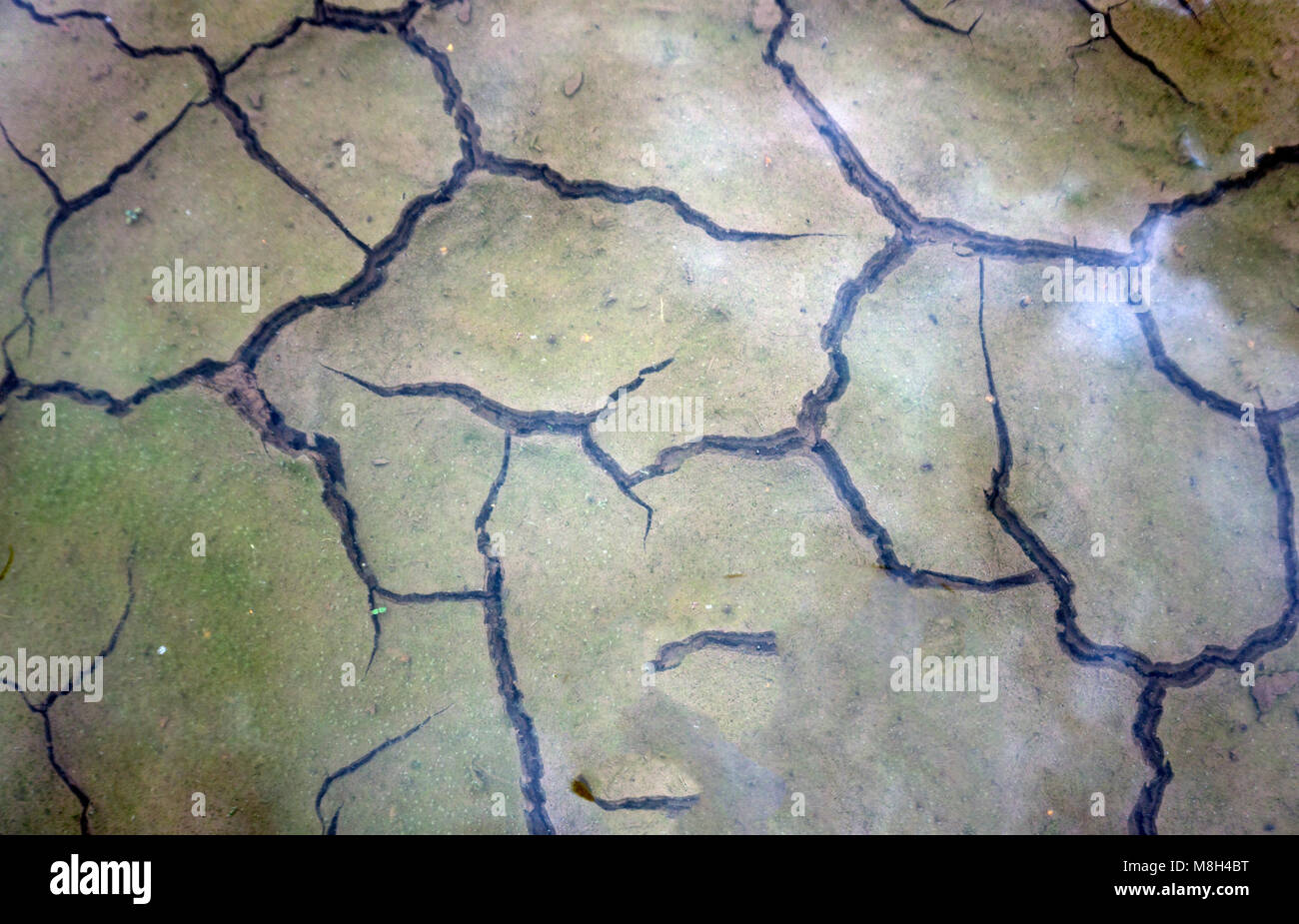 Dry, cracked earth, the top covered with water - Stock Image