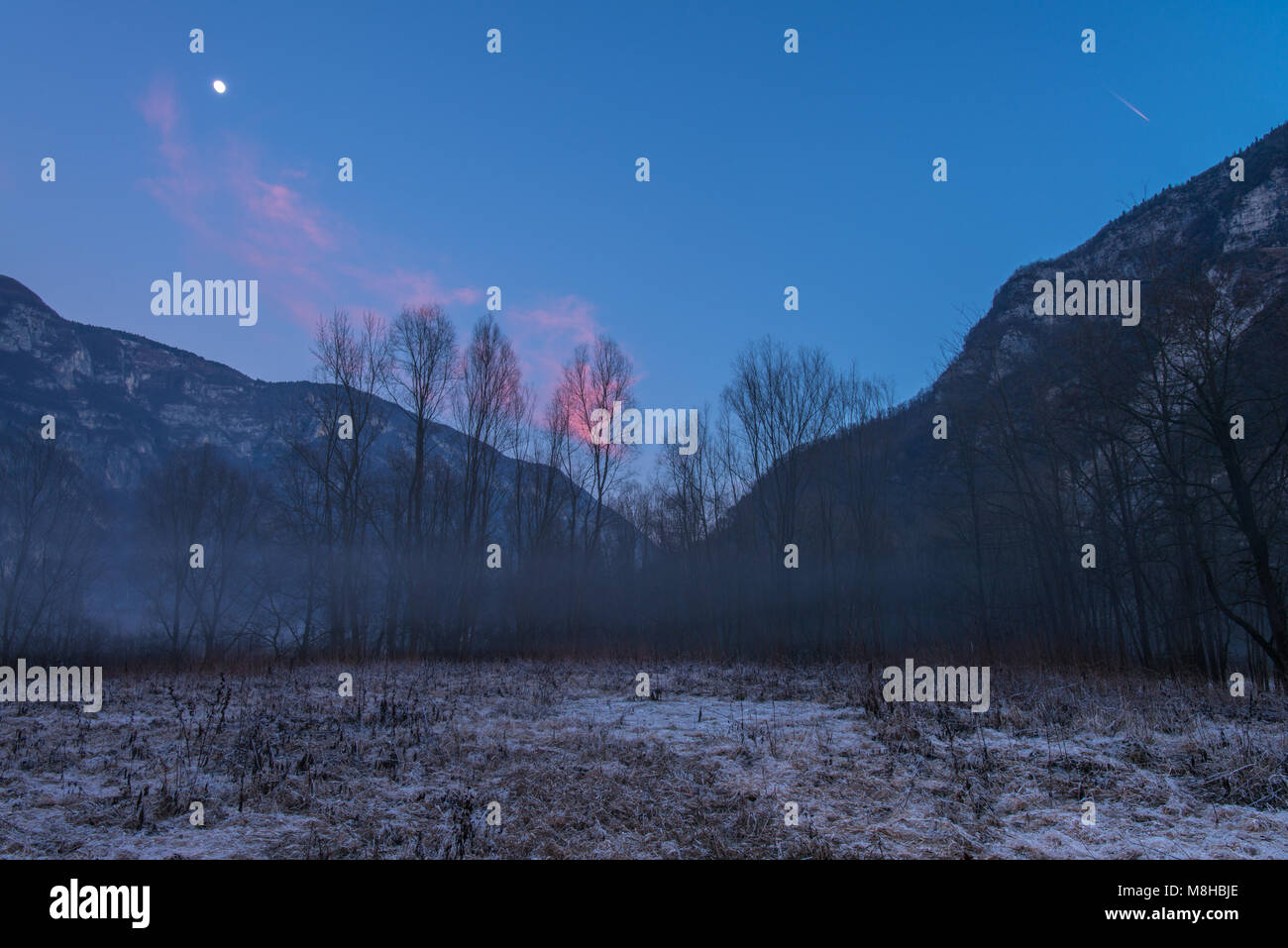 Spooky woods enveloped by a thin haze at sunset. Imposing mountains surrounding the meadow, frost on the ground, - Stock Image