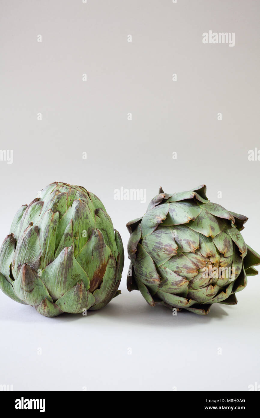 Two artichokes on white background with copy space Stock Photo