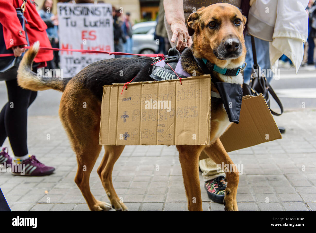 Barcelona, Catalonia, Spain. 18nd Mar, 2018. A dog in the demonstration for fair pensions. Pensioners & young - Stock Image