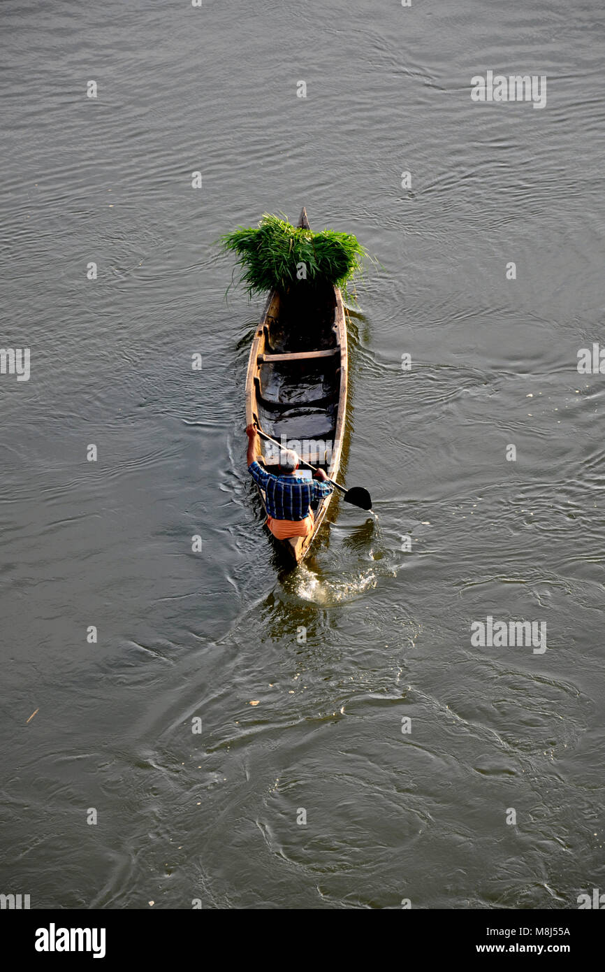 this photo is taken from periyar river in kalady,kerala. - Stock Image