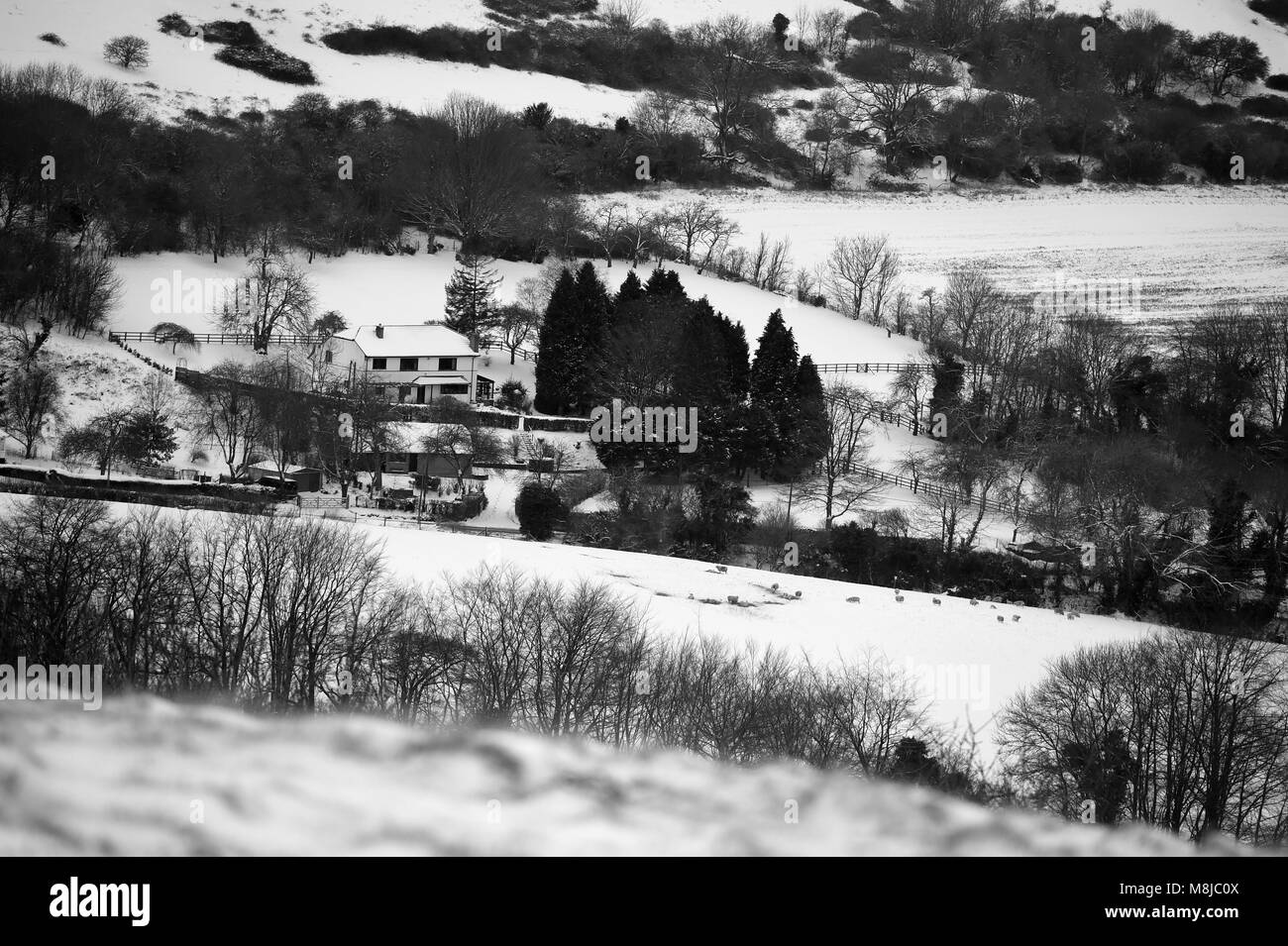 Lone house among the snow covered hills above the village of Bratton in Wiltshire - Stock Image