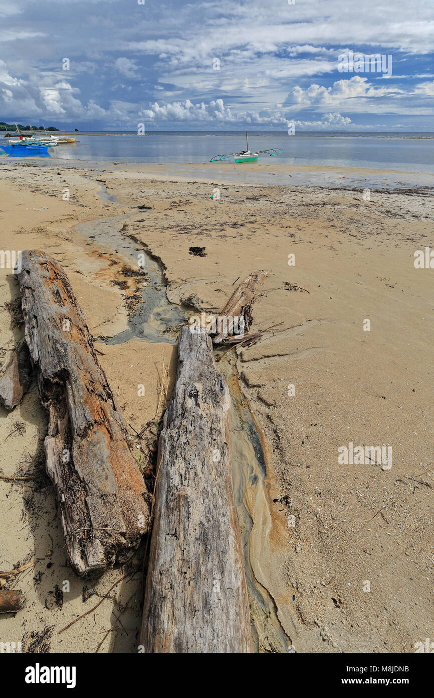 Sea wrack and tree log on the sand-balangay or bangka double outrigger boats for touris use of the nearby resorts - Stock Image