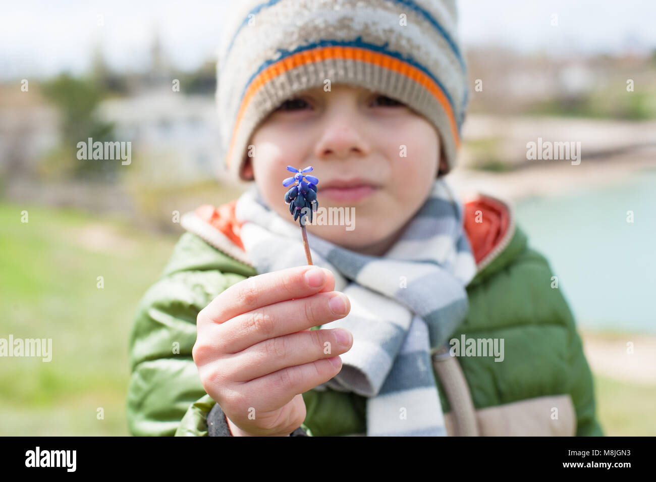 beautiful little boy in jacket, scarf and hat shows Muscari flower which he holds in his hand in spring - Stock Image
