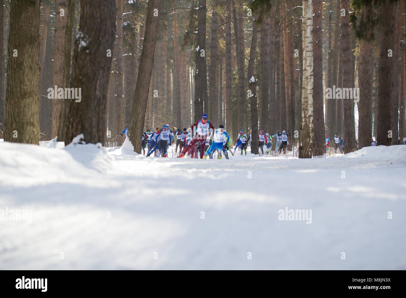 KAZAN, RUSSIA - March, 2018: Athletes skiers running a marathon in the winter woods Stock Photo