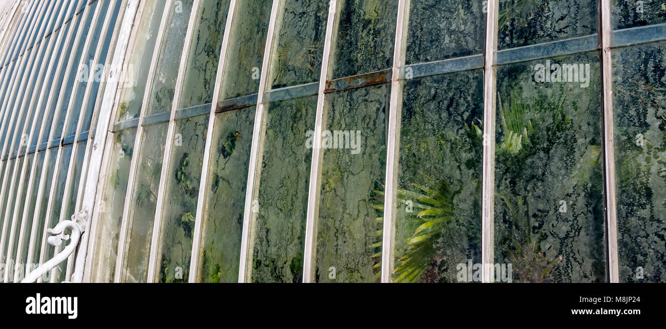 Condensation collects on the inside windows of the famous Palm House in Kew's Royal Botanical Gardens - Stock Image