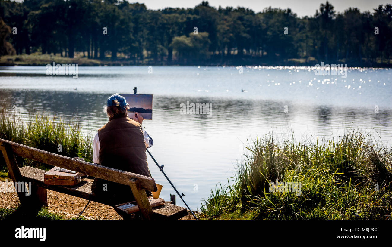 Pen Pond's pond life is captured by a seated artist in London's famous Richmond Park Stock Photo