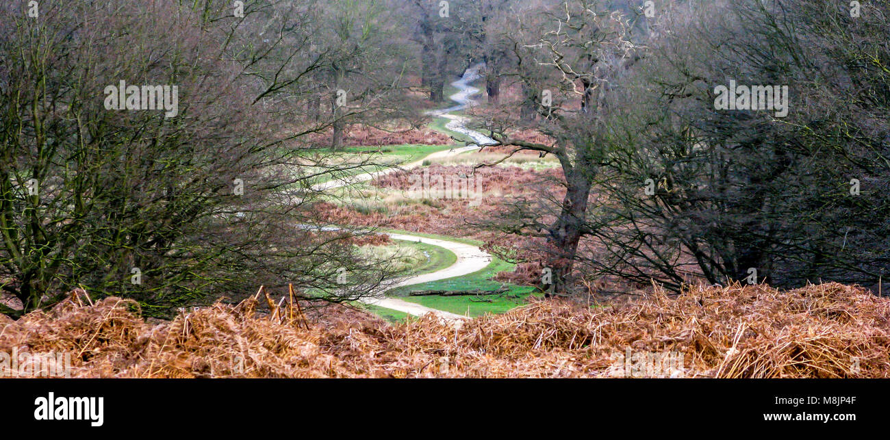 A winding path snakes down Broomfield Hill to Robin Hood Gate in Richmond Park which is a National Nature Reserve - Stock Image
