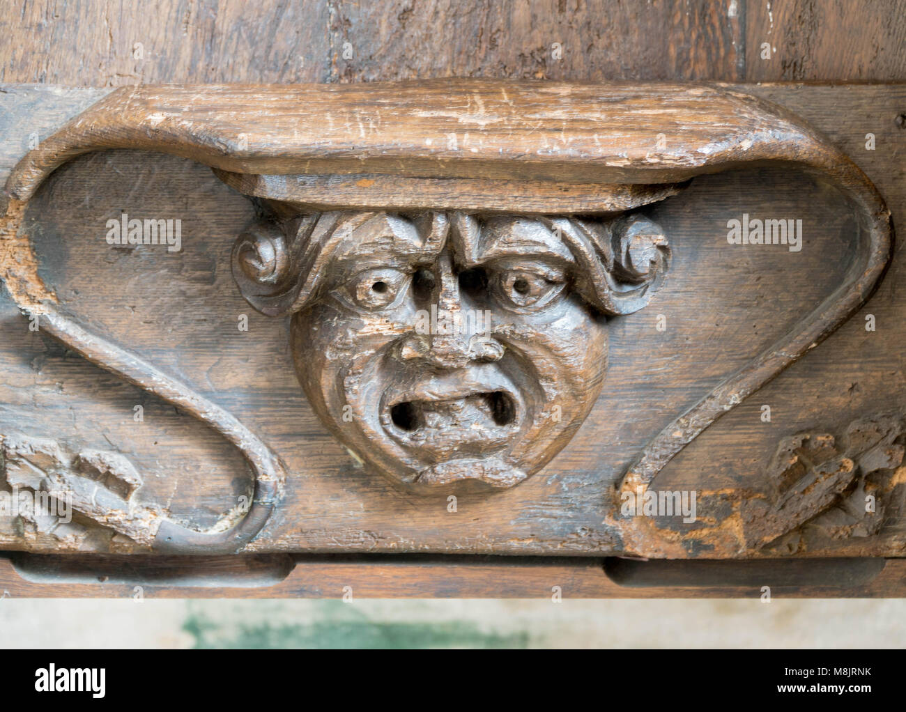 Misericord with carving of open mouthed male head. St Cuthbert Church Holme Lacy Herefordshire UK. March 2018. - Stock Image