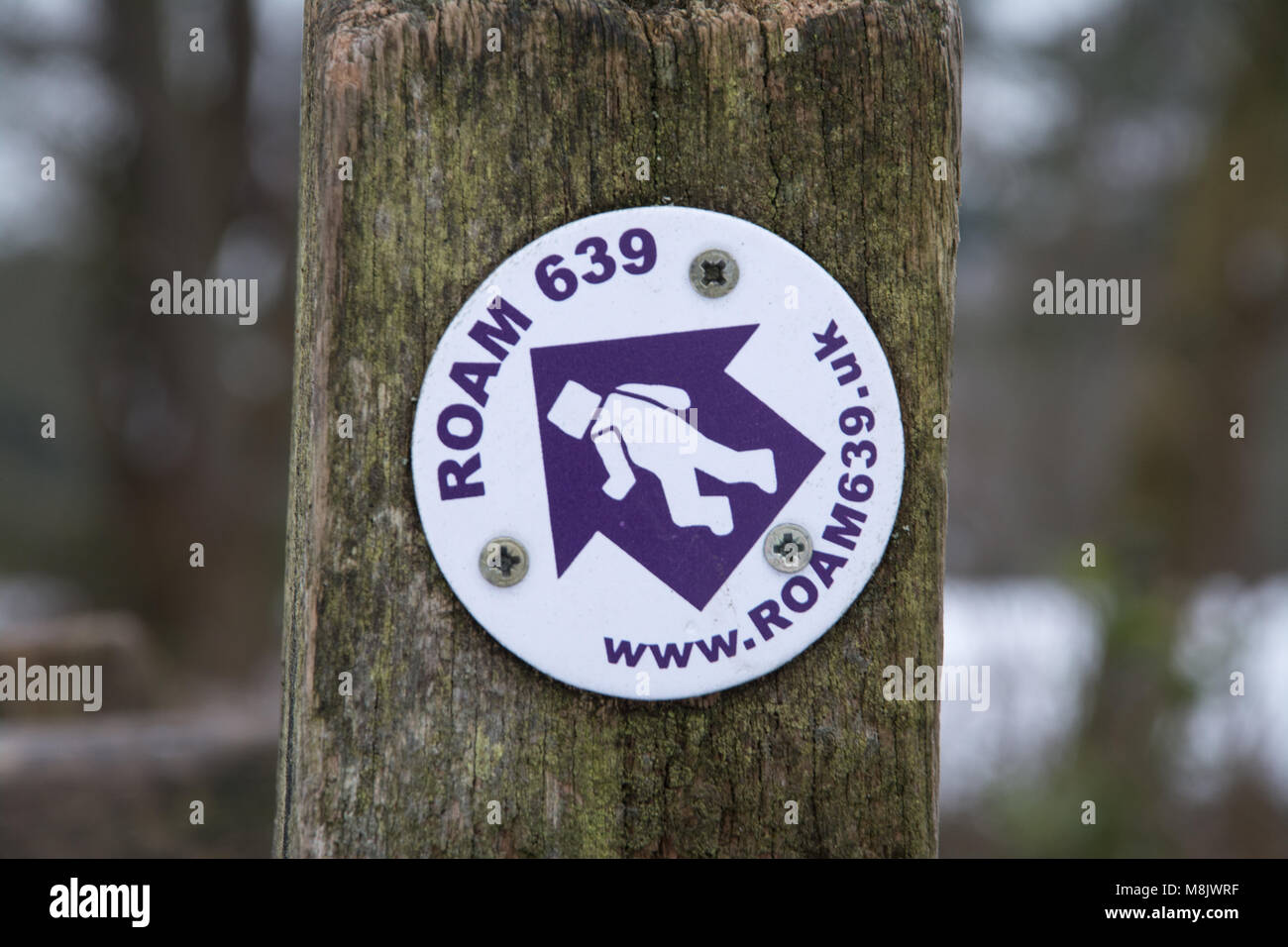 Signpost marker for the ROAM 639 trail at the Devils Punchbowl in the Surrey Hills - Stock Image