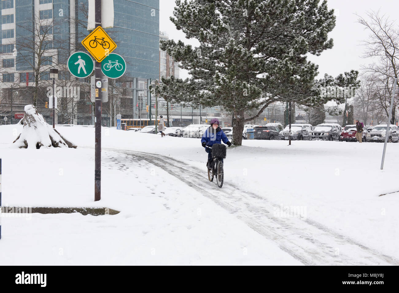 Bicyclist cycling down a snowy bike lane in Vancouver City - Stock Image