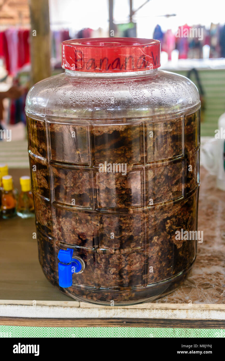 Large jar of rice wine with bananas, used as an alternative medicine, Vietnam - Stock Image