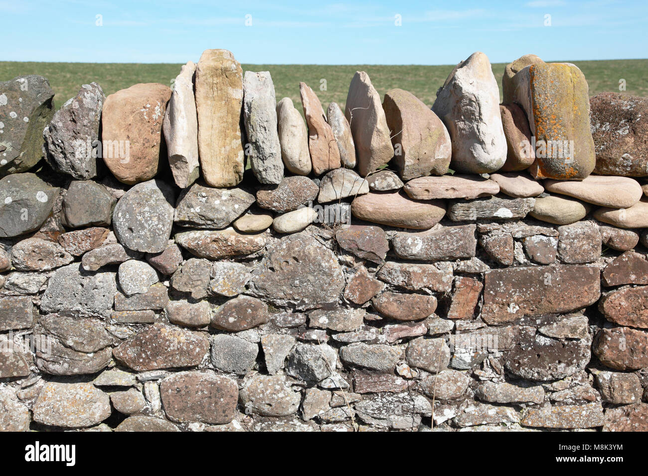 A dry stone wall on Lindisfarne, Holy Island Stock Photo