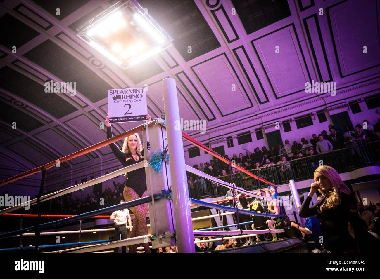 Ring girl at York Hall, Bethnal Green - Stock Image