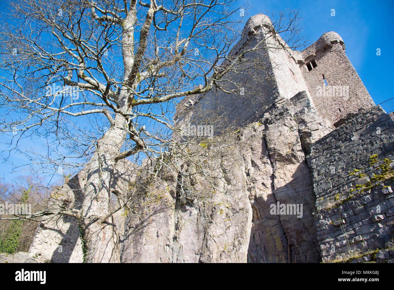 castle ruin in the heights of Baden-Baden Stock Photo