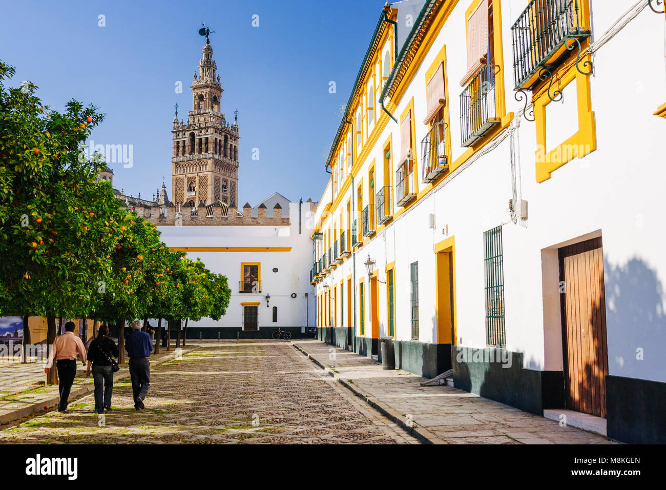 Seville, Andalusia, Spain : People walk at the Patio de Banderas square in Santa Cruz district with Giralda bell - Stock Image
