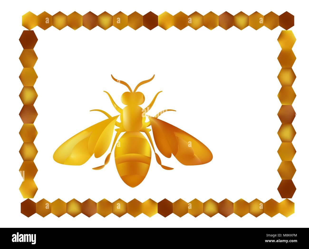 Golden honey bee uterus of summer day on white background. - Stock Vector
