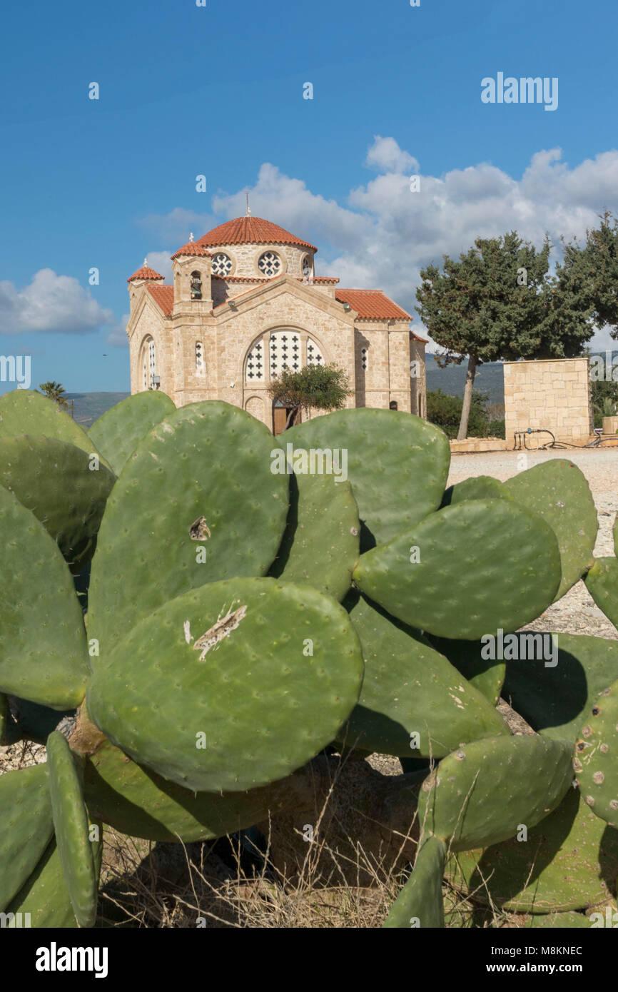 Cactus and church at Agios Georgious, Pegia village, Paphos, Cyprus - Stock Image