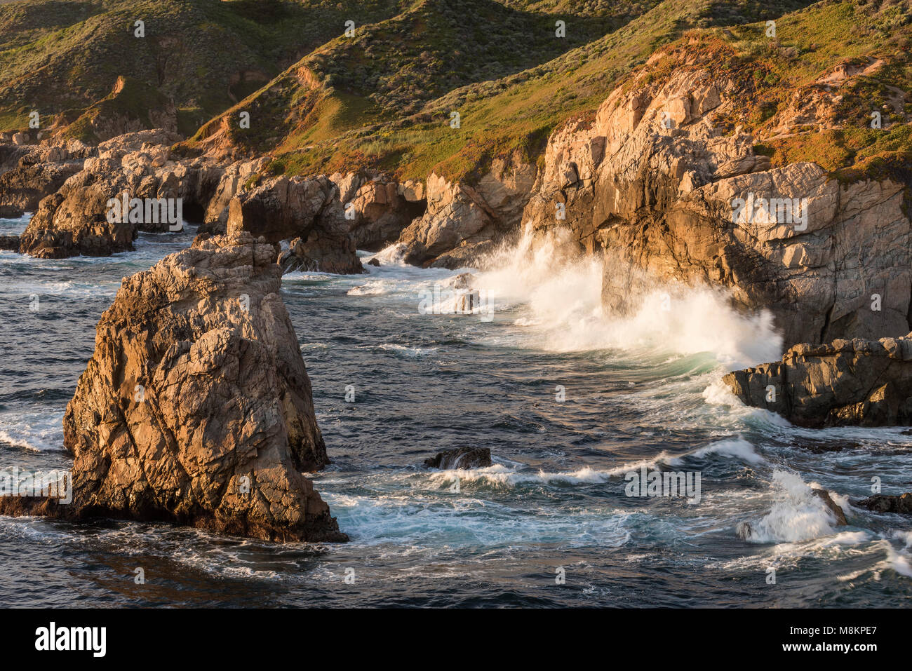 Surf, Garrapata State Park, CA USA. April, by Dominique Braud/Dembinsky Photo Assoc - Stock Image