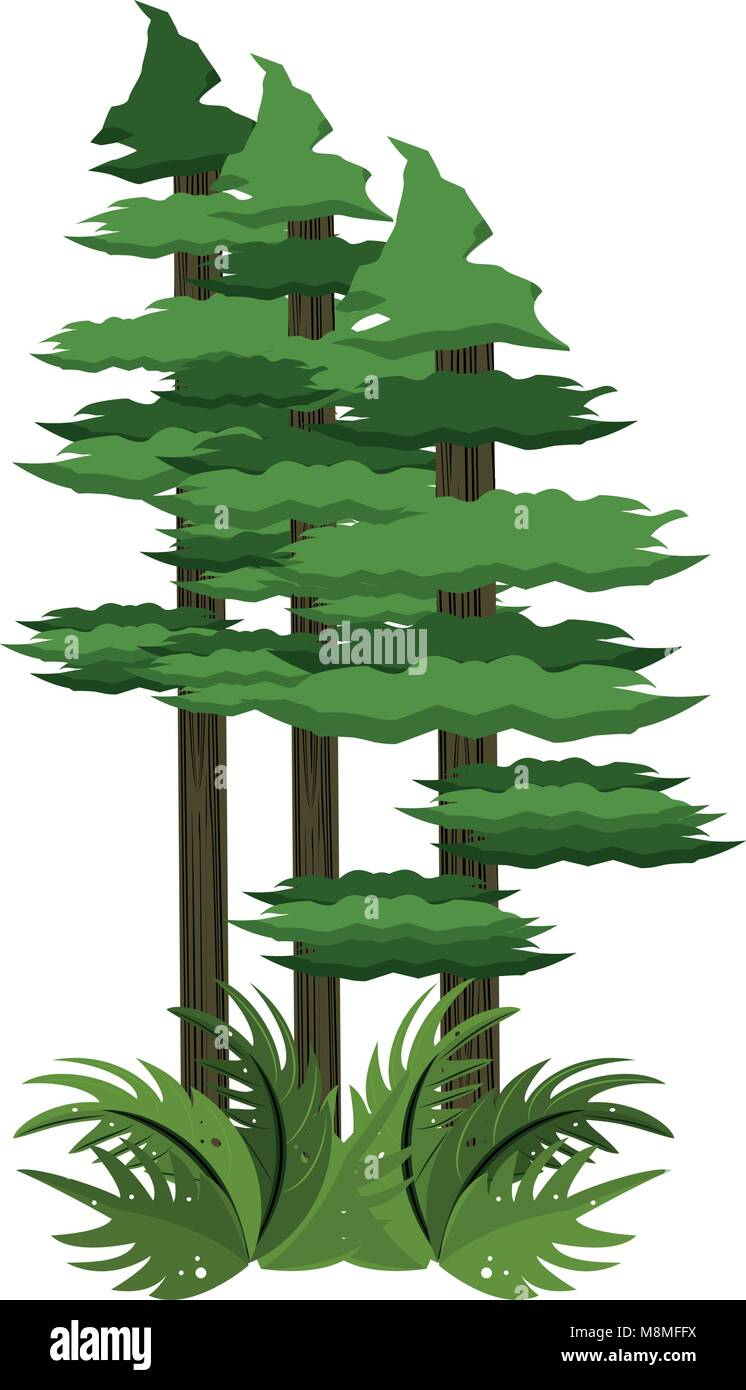 Trees Cartoon High Resolution Stock Photography And Images Alamy Begin by drawing a curved line to outline the trunk of one of the trees. https www alamy com stock photo forest trees cartoon 177472174 html