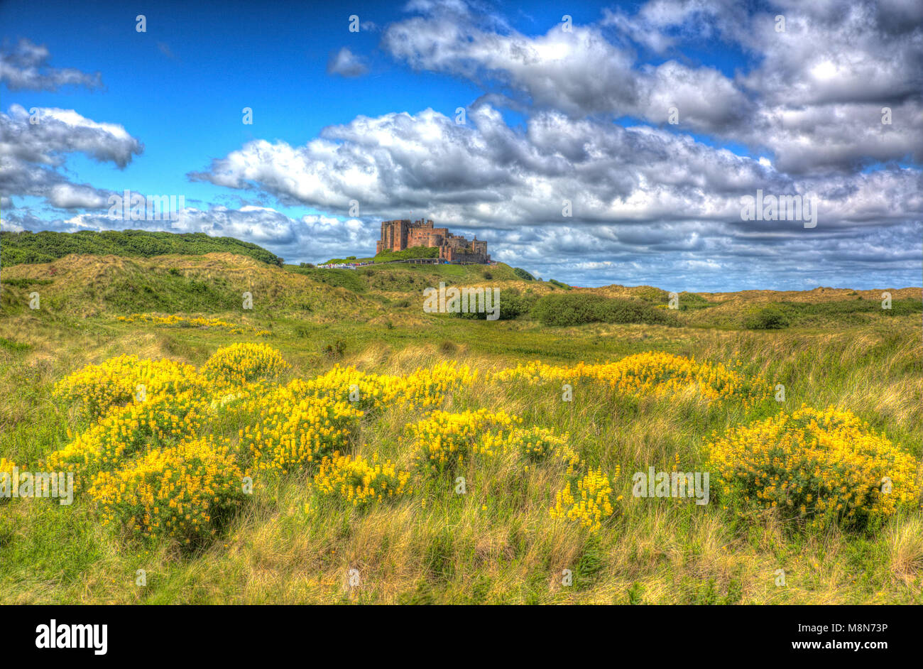 Bamburgh Castle Northumberland north east England medieval fort on hill in hdr - Stock Image