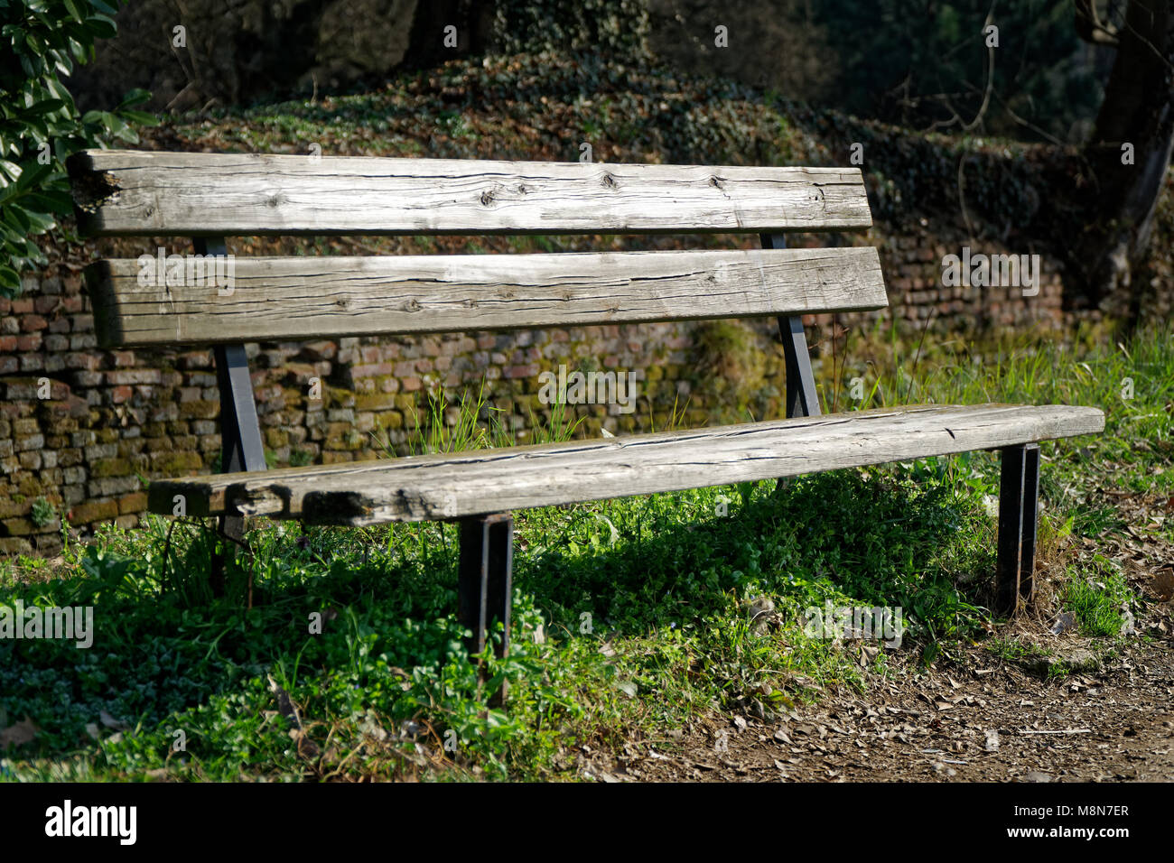 One wooden bench on sunny day in Italy, public parkland. Stock Photo