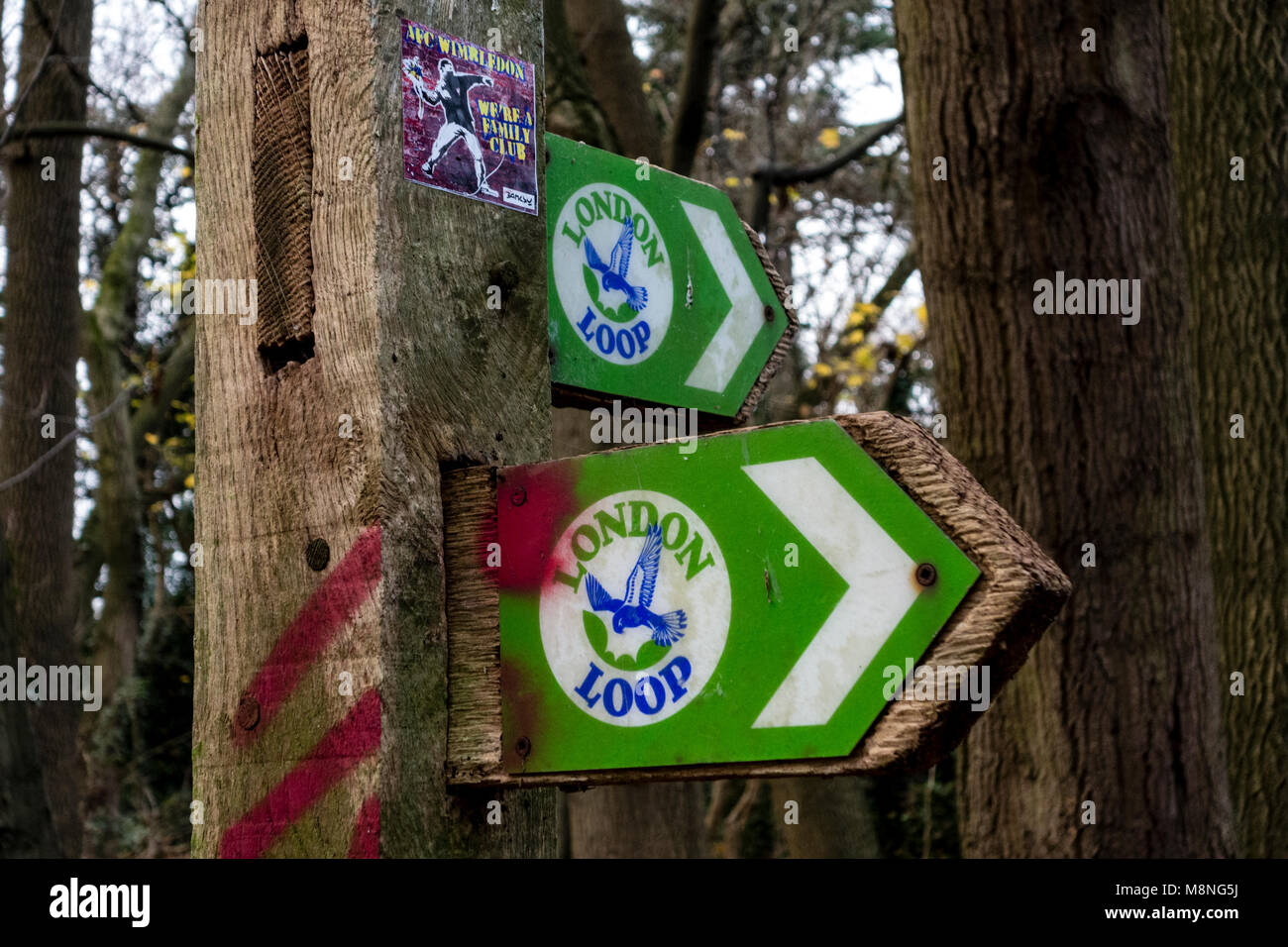 London Loop (London Outer Orbital Path) signpost with a flying kestrel logo.  It is 150 miles circular walk.  UK - Stock Image