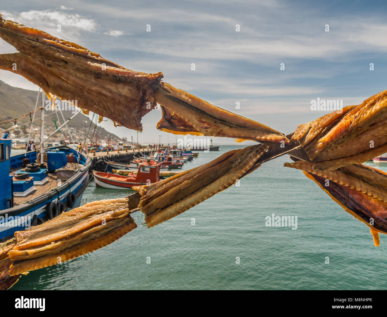Snoek (baracuda) salted and drying in the sun at a local fish market. Considered a delicacy by some ... Cape Town, - Stock Image