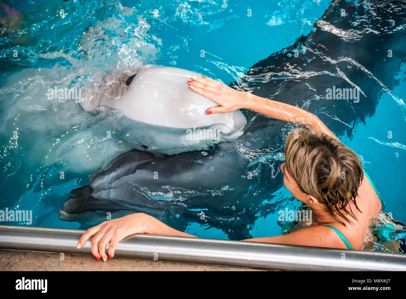 Woman swims with dolphin in dolphinarium Stock Photo