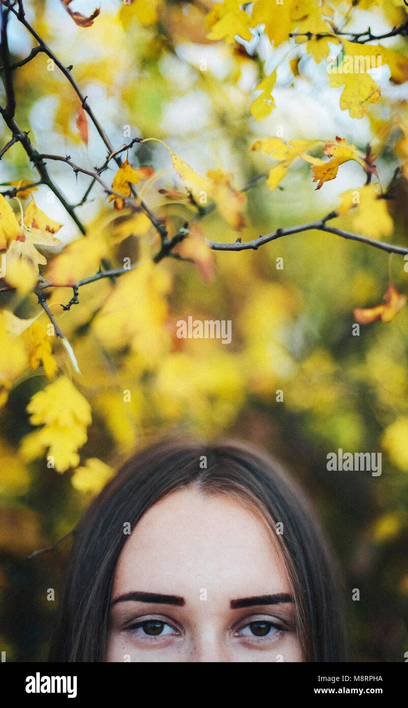 Cropped portrait of woman by trees at park during autumn - Stock Image