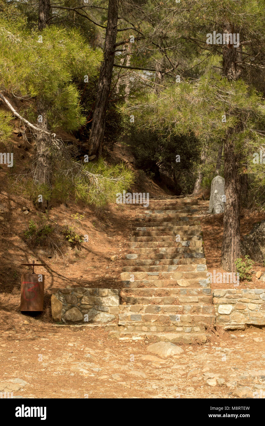 Steps to the start of the Caledonia waterfall trail from the Psilo Dendro trout farm during spring, Paphos, Cyprus - Stock Image