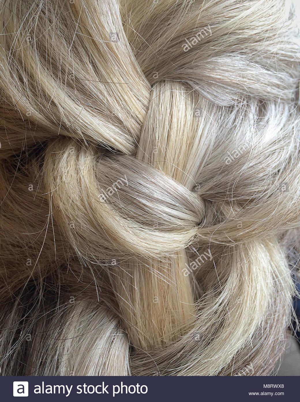 Rear view of woman with gray braided hair - Stock Image