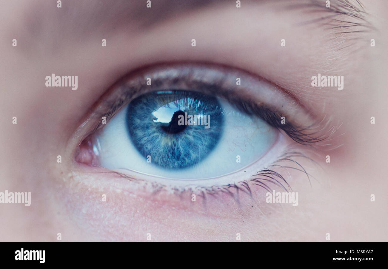 Close-up of person's blue eye - Stock Image