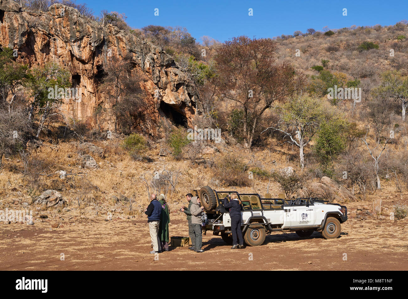 A stop on an early morning safari at Madikwe Game Reserve, so that Tourists can have early morning refreshments. - Stock Image