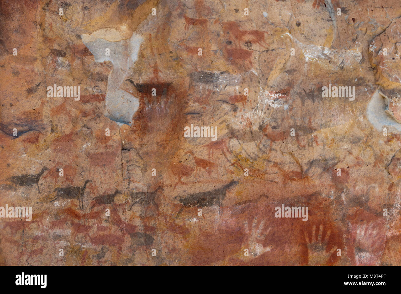 Rock art near the Cuevo de las manos. - Stock Image