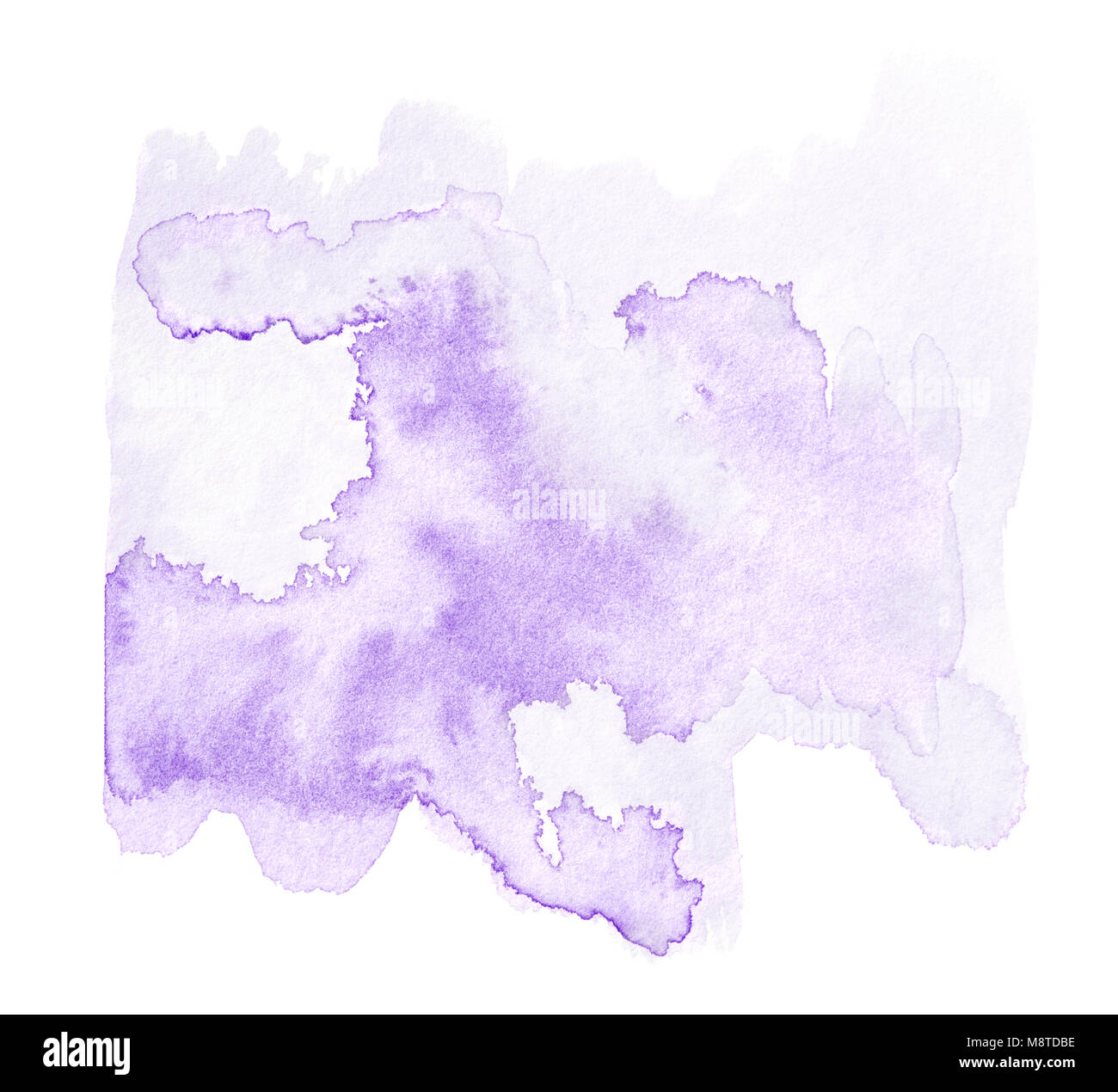 Abstract Purple Watercolor Splash Isolated On White