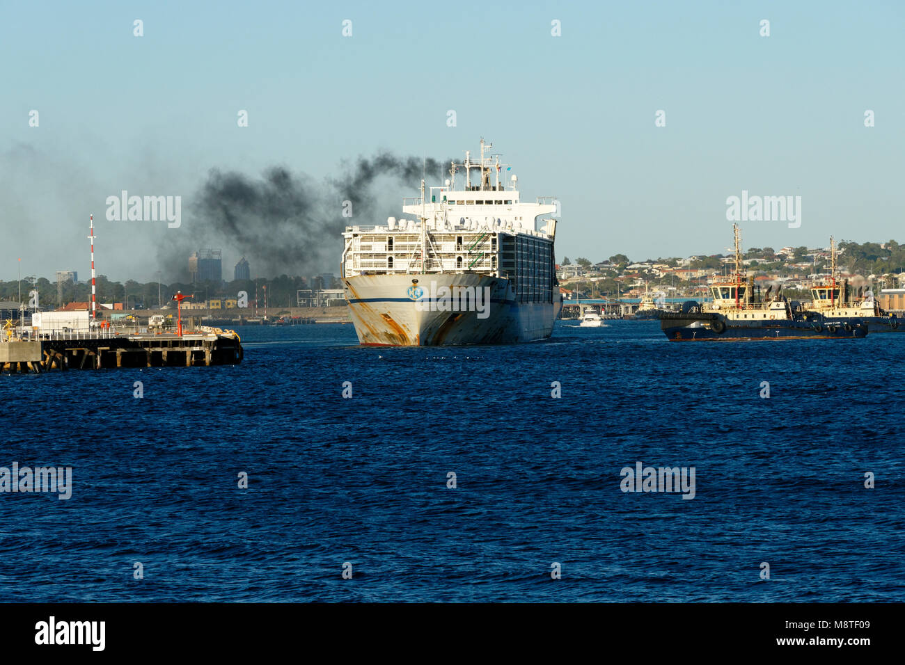 Sheep carrier AL SHUWAIKH leaving Fremantle harbour, Fremantle, Western Australia - Stock Image