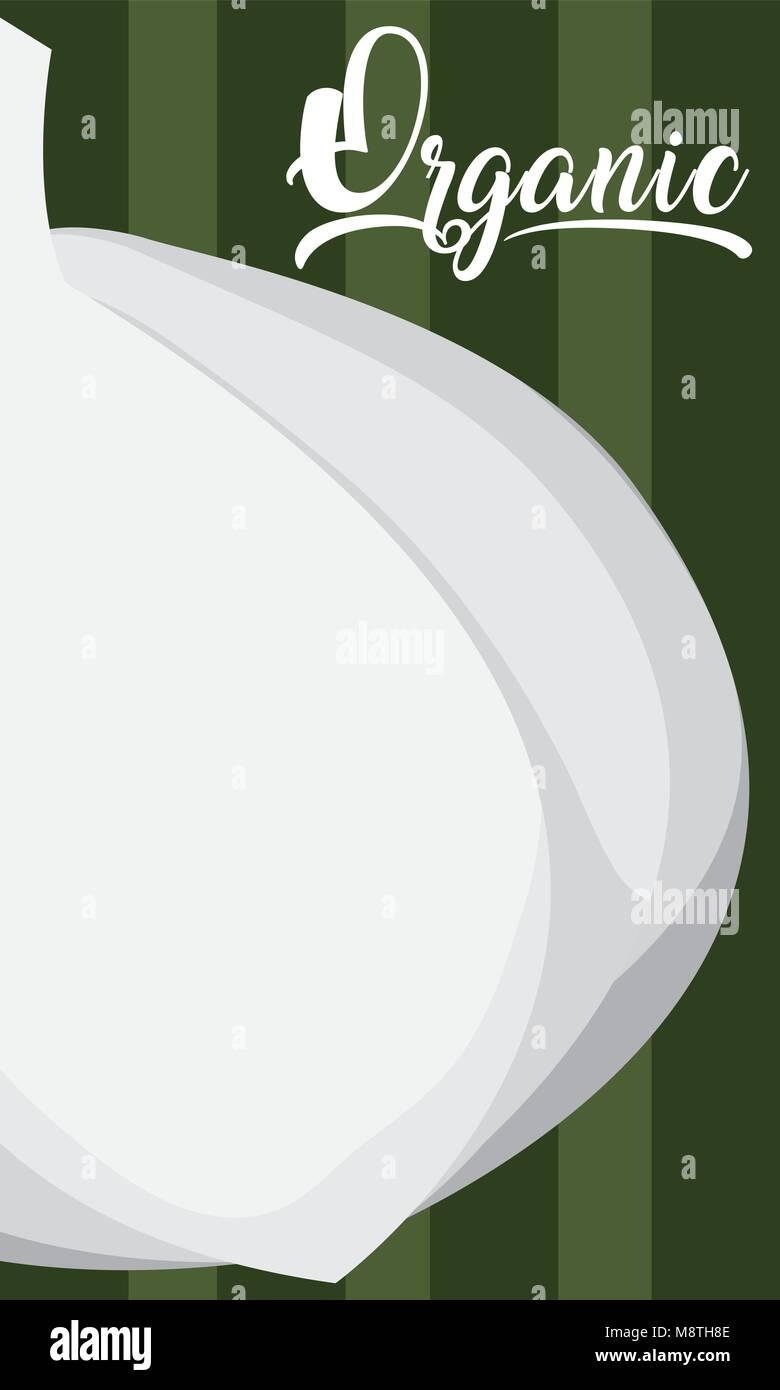 Organic garlic cartoon - Stock Vector