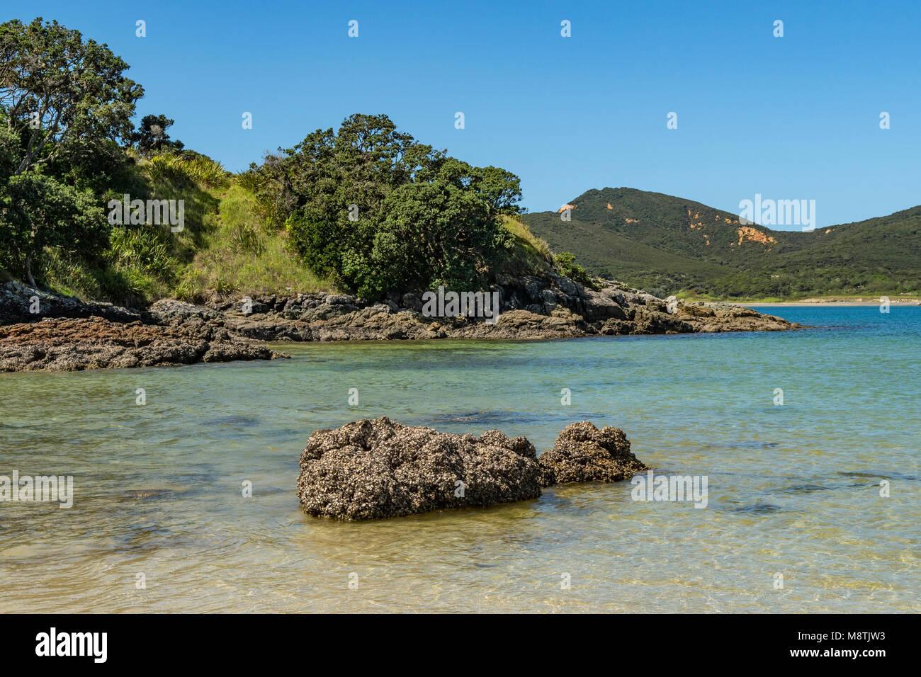 Waikato Bay, Karikari Peninsula, North Island, New Zealand - Stock Image