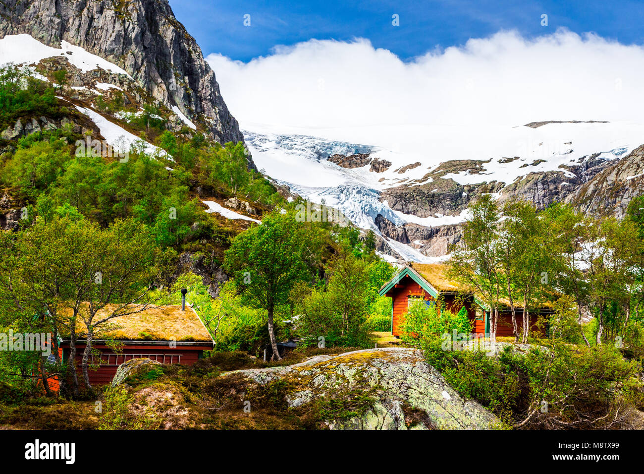Folgefonna National Park with Buardalen valley and glacier in the background, Hordaland, Norway - Stock Image