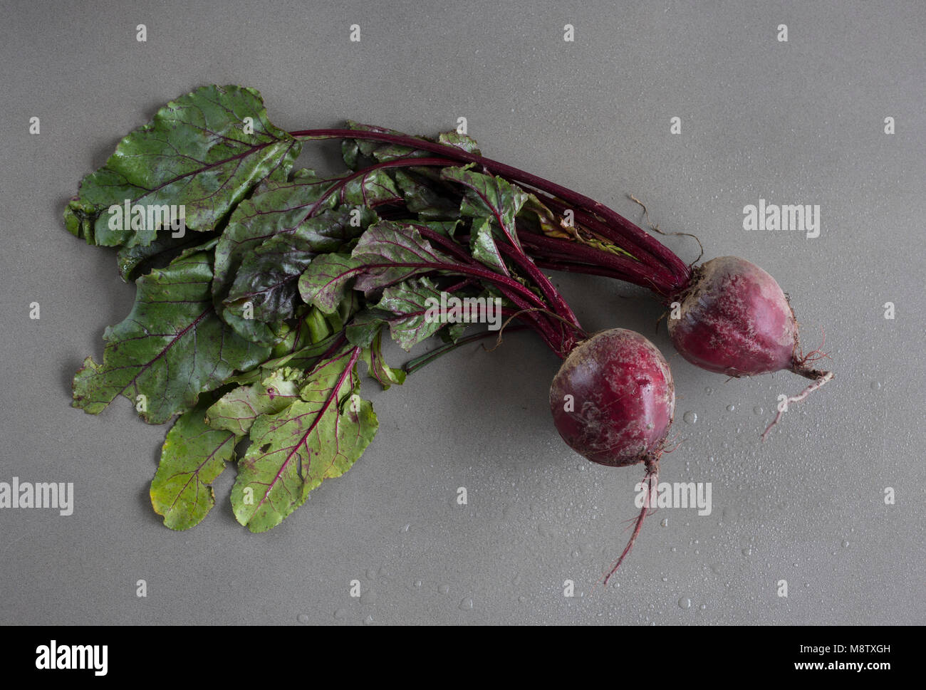 Beetroot with leaves on grey background from above - Stock Image
