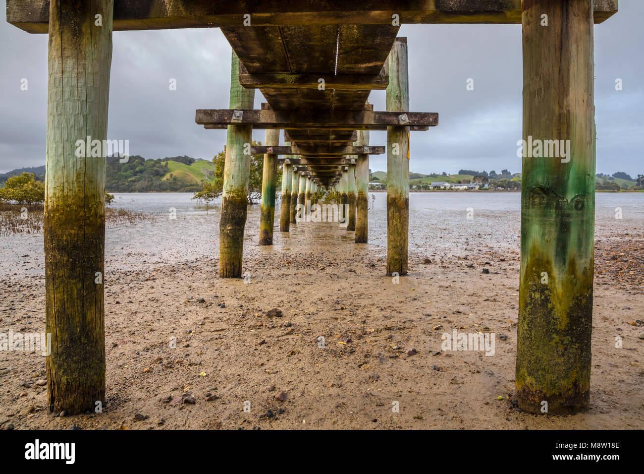 Longest wooden Footbridge in the Southern Hemisphere, Whananaki, New Zealand - Stock Image