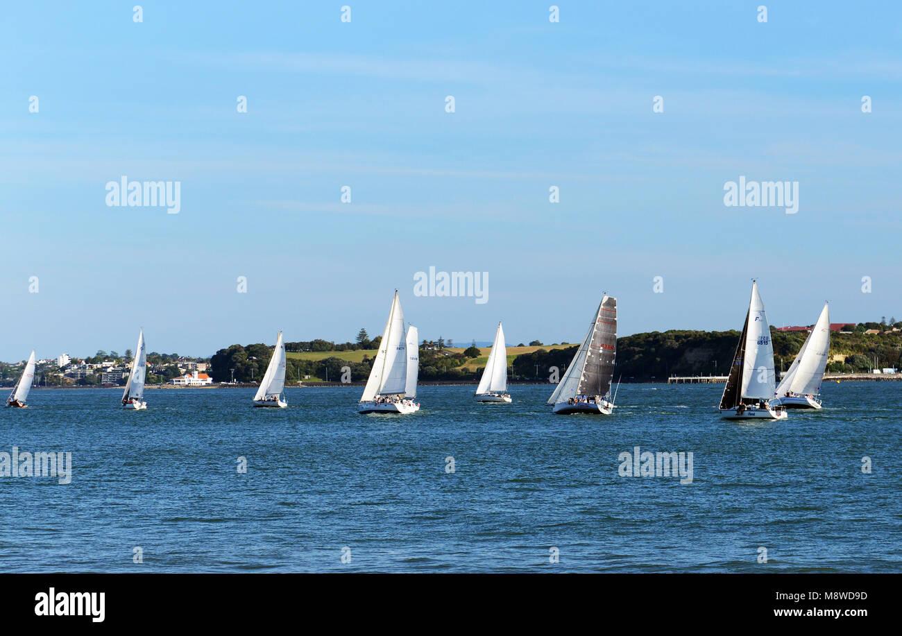 Sailing in Auckland's Hauraki Gulf. - Stock Image