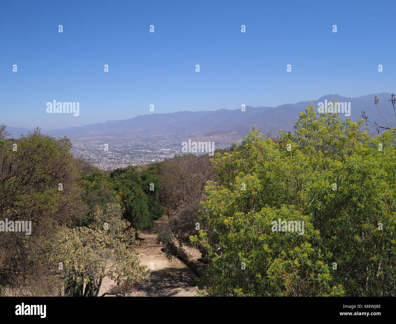 Beauty Mexican Mountainside Path And Landscapes With Colorful