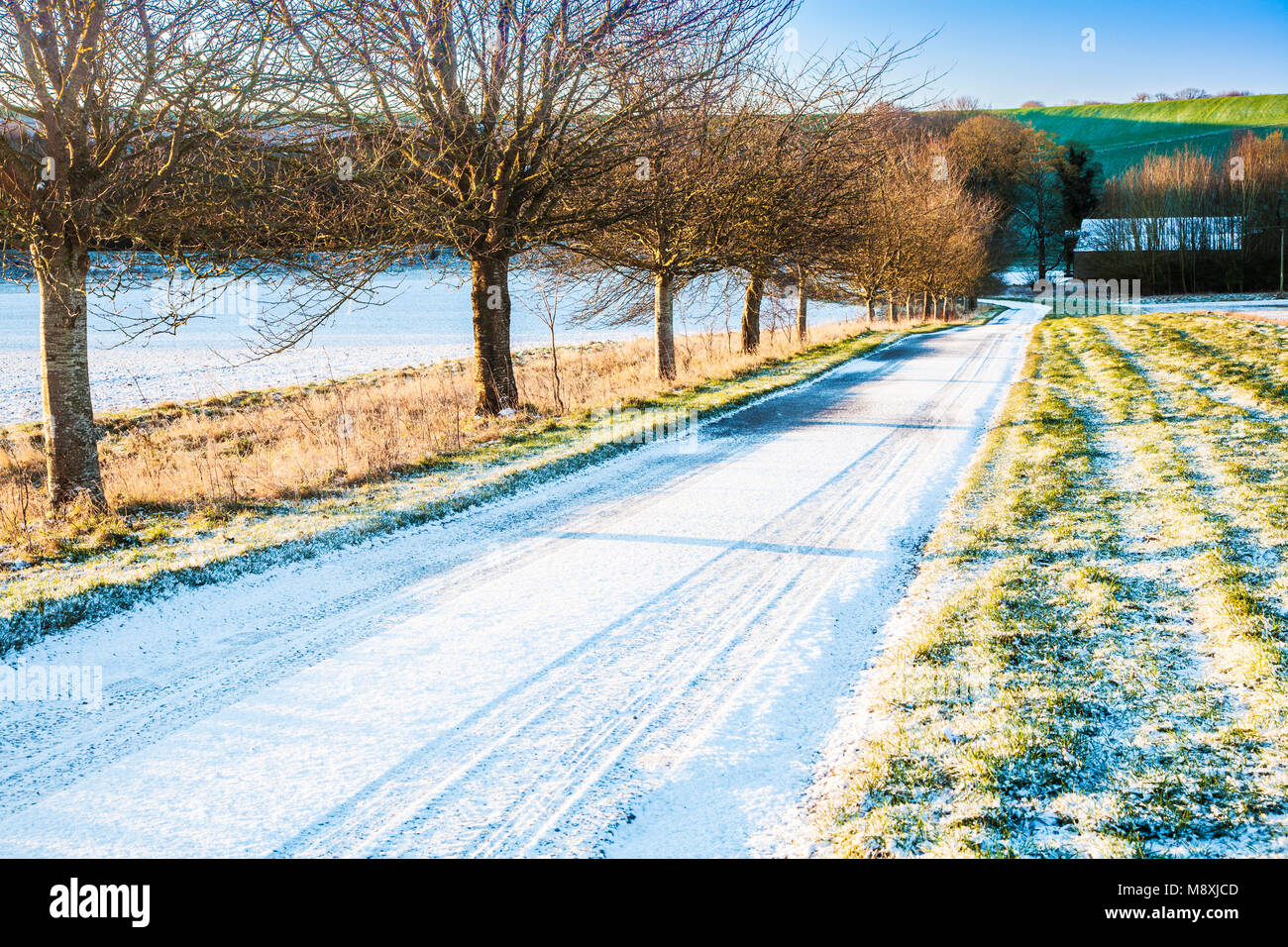 A small country lane on a frosty winter's morning on the Marlborough Downs. - Stock Image