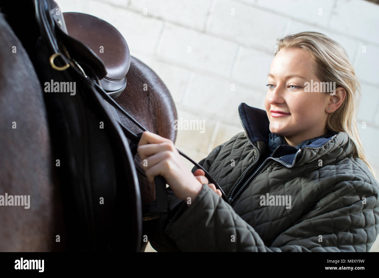 Female Owner Adjusting Saddle Straps In Stable With Horse - Stock Image