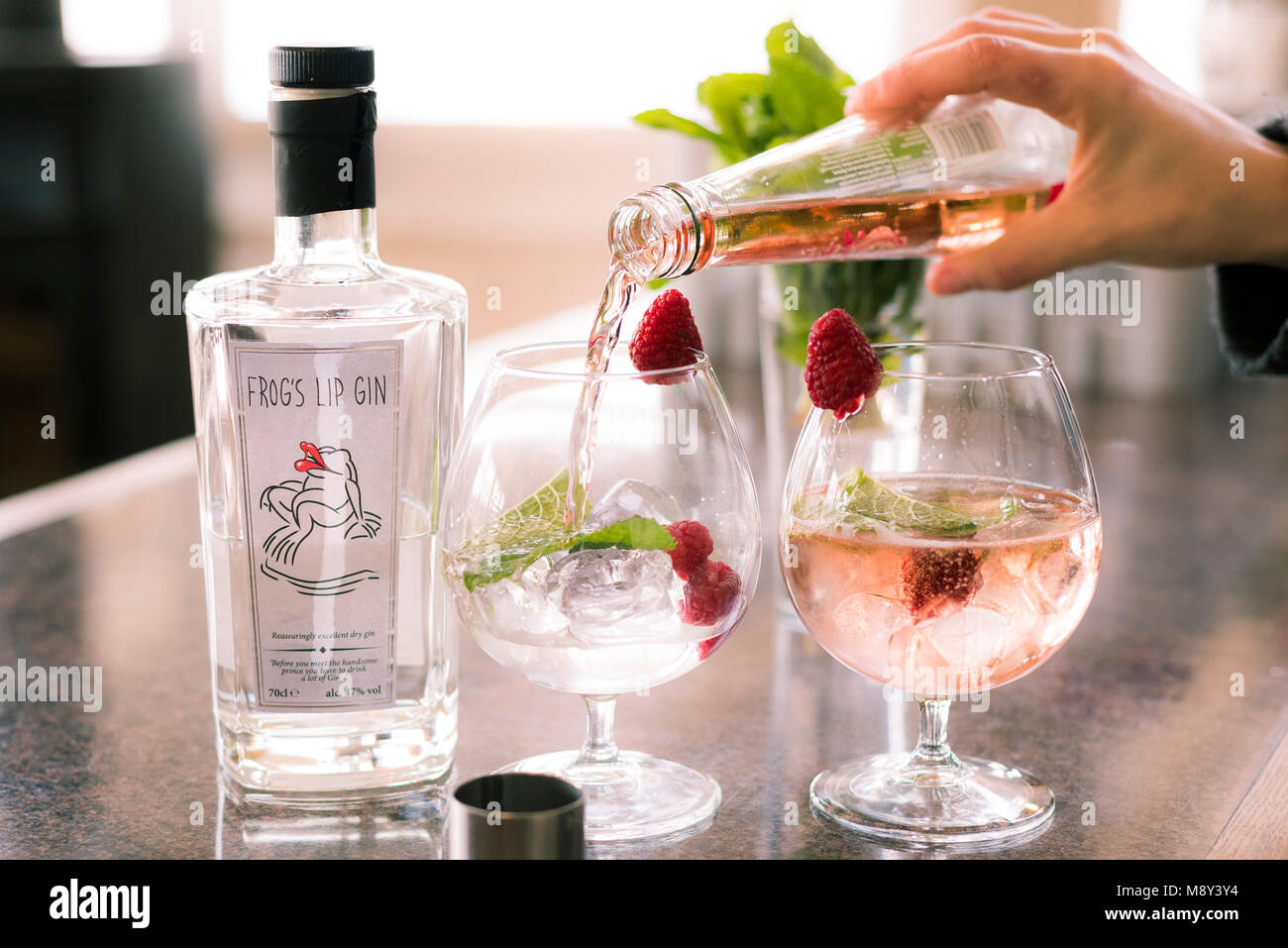 Gin and tonic drinks being prepared. - Stock Image