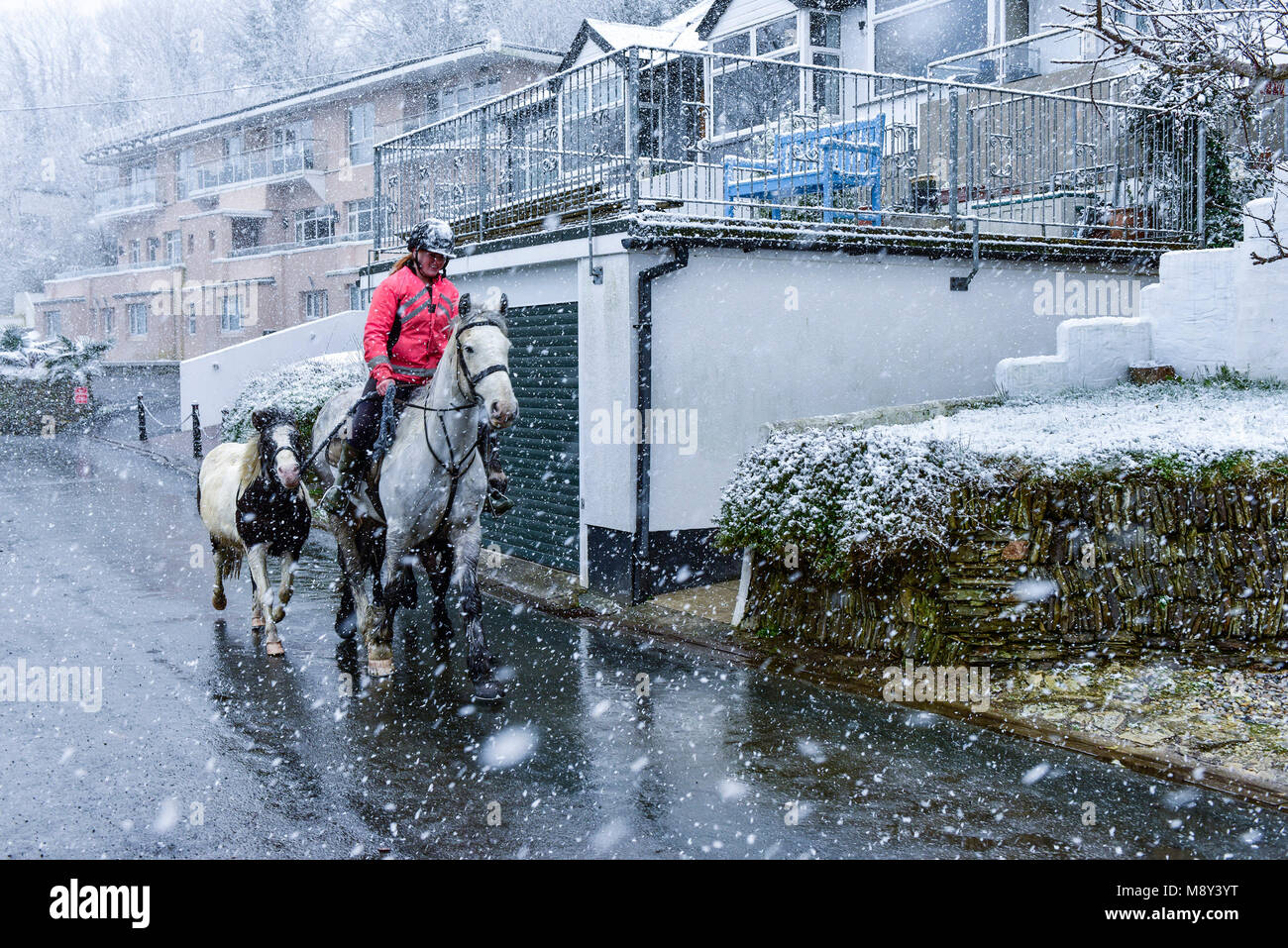 A horse rider riding her horse through heavy snowfall in Newquay Cornwall. - Stock Image